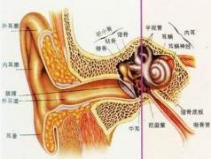 耳聋需要做什么检查