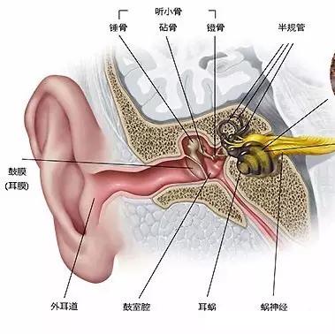 外耳道炎有哪些治疗方法